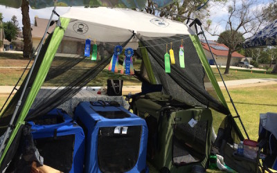 Trialing and Camping Around Town