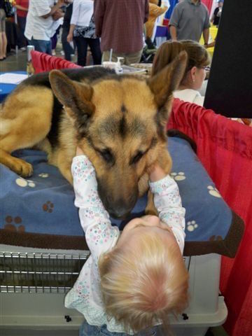 """Bravo"" making friends at Pet Expo"