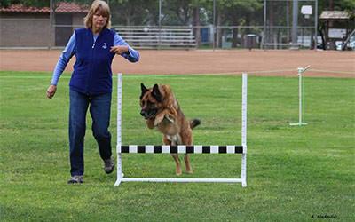 Bruno Makes it Look Easy!